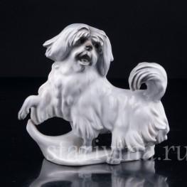 Статуэтка из фарфора Собака, Karl Ens, Германия, 1920-30 гг.